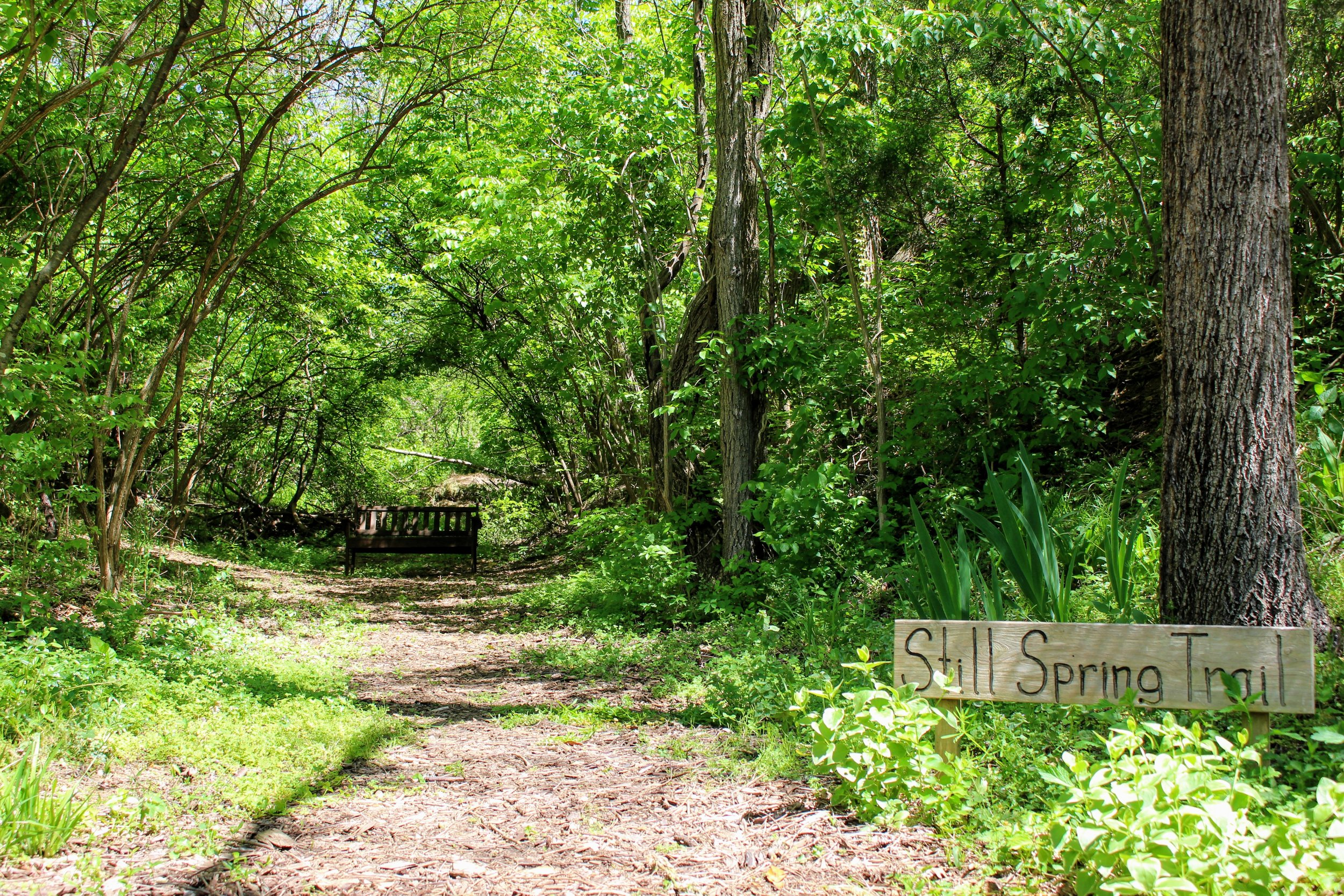 Still Springs Park - Memorial Garden. Wooded Trail. Meditation Area. Playground.Learn More!
