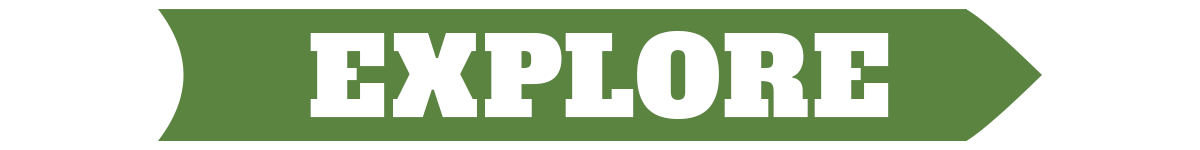 Explore Organic.png