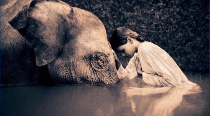 Compassion 1.jpeg