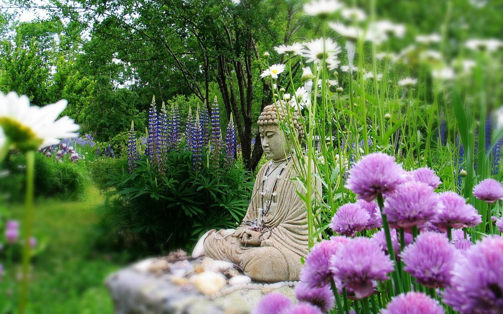 méditation printemps.jpg