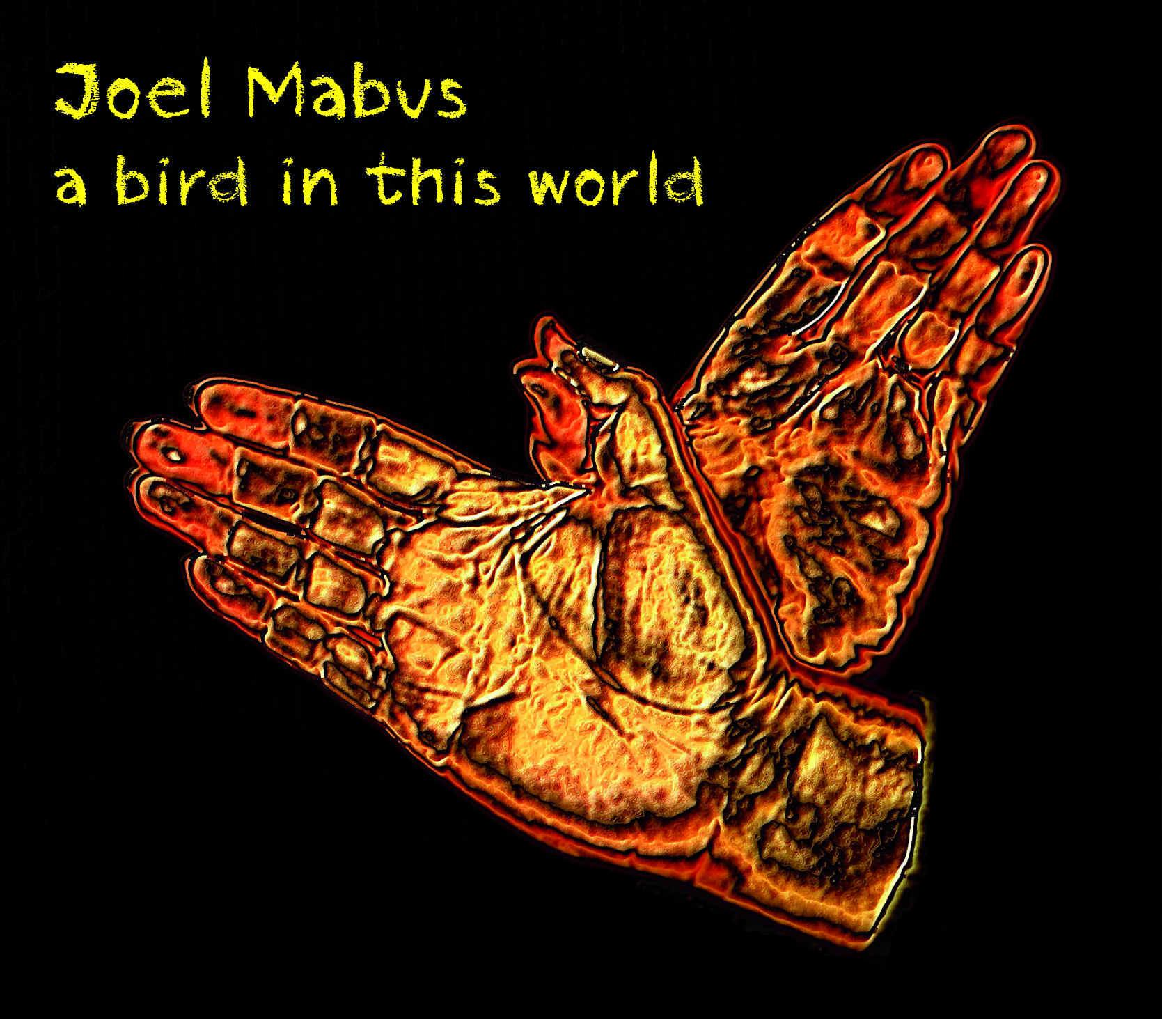 "Joel Mabus - ""A Bird In This World"""