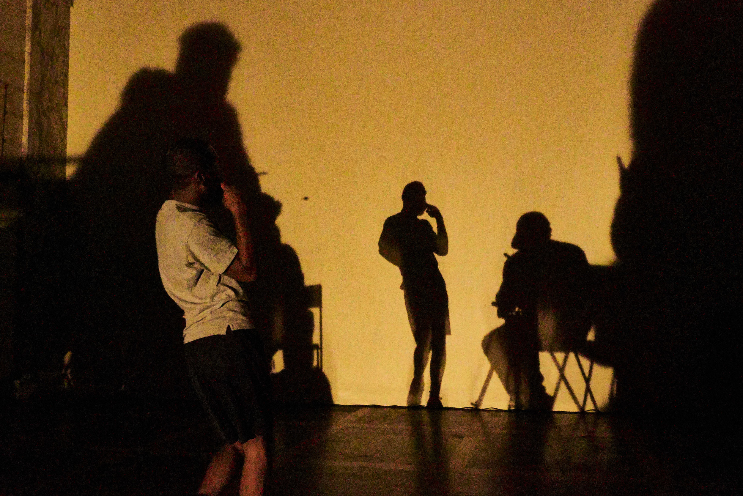 Image: In a dark photo, I dance playfully with my back to the camera as sepia light casts my and and the audiences shadows on the wall before us. I wear a gray t-shirt and black gym shorts.
