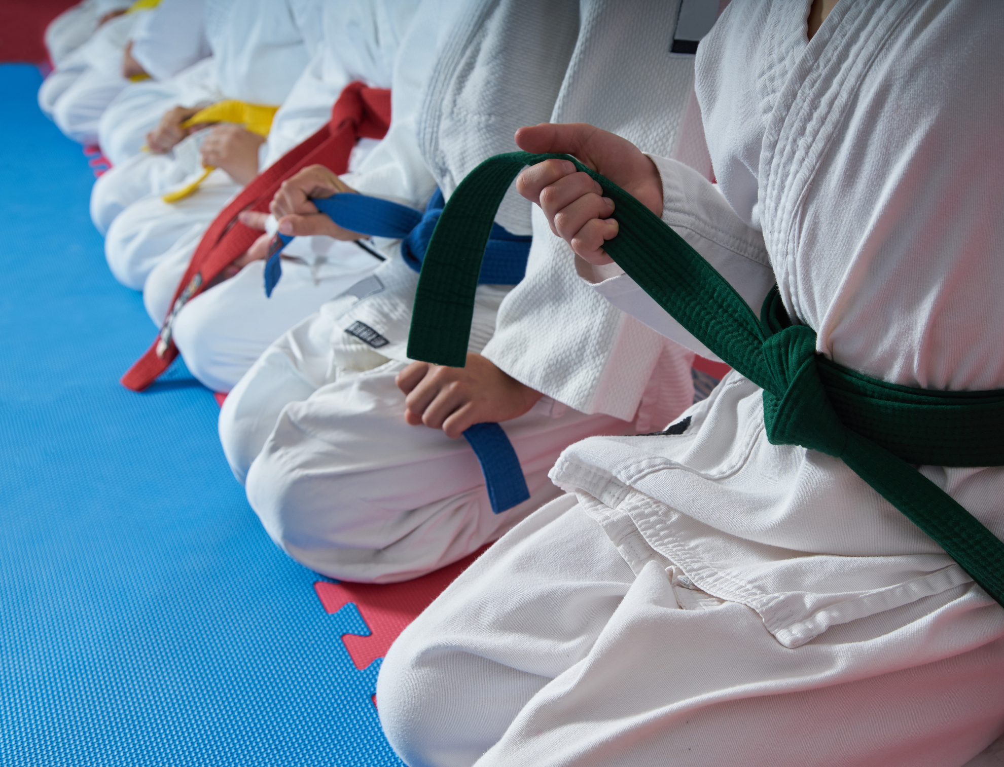 Free Martial Arts trial lessons in Virginia!