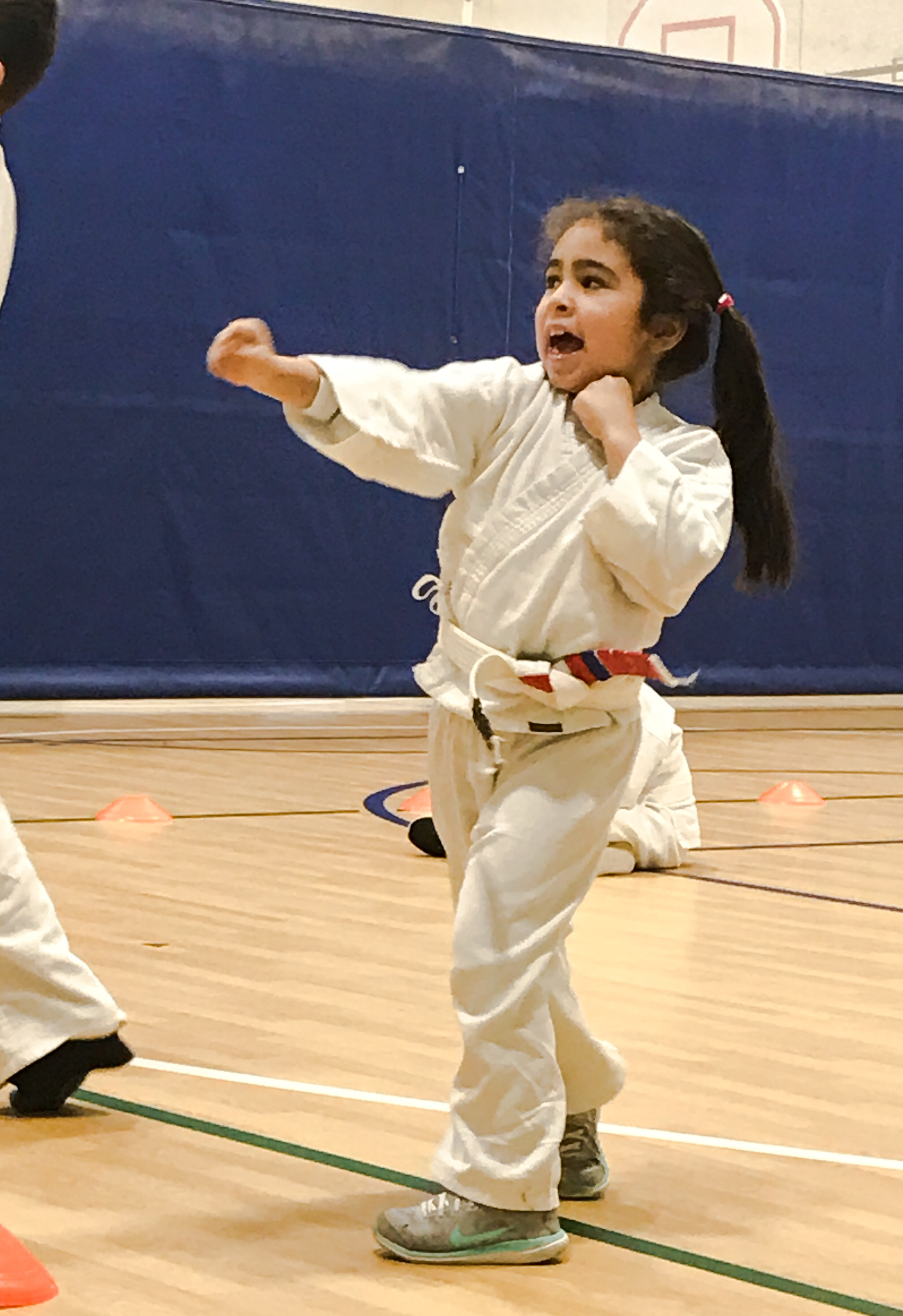 Catalina Tae Kwon Do.JPG