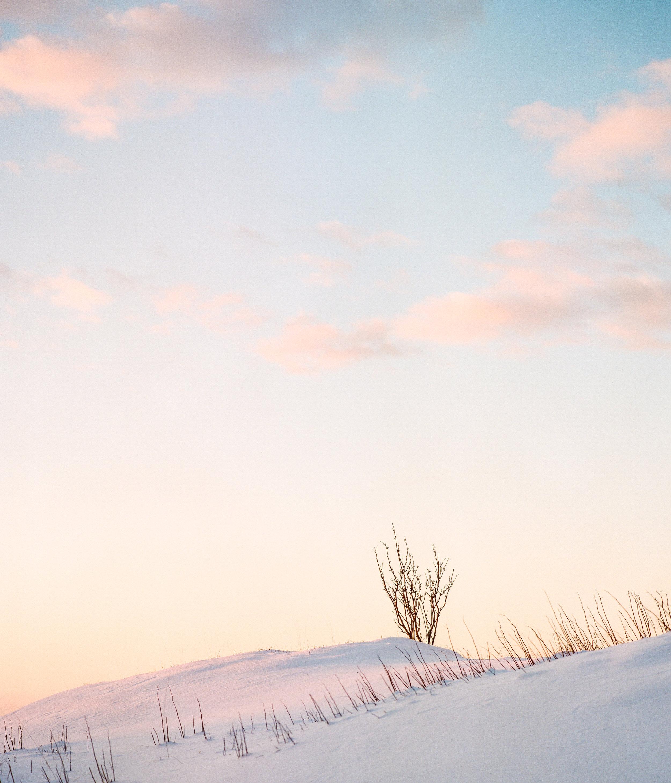 Czerwinski_Submission_Winter-2.jpg