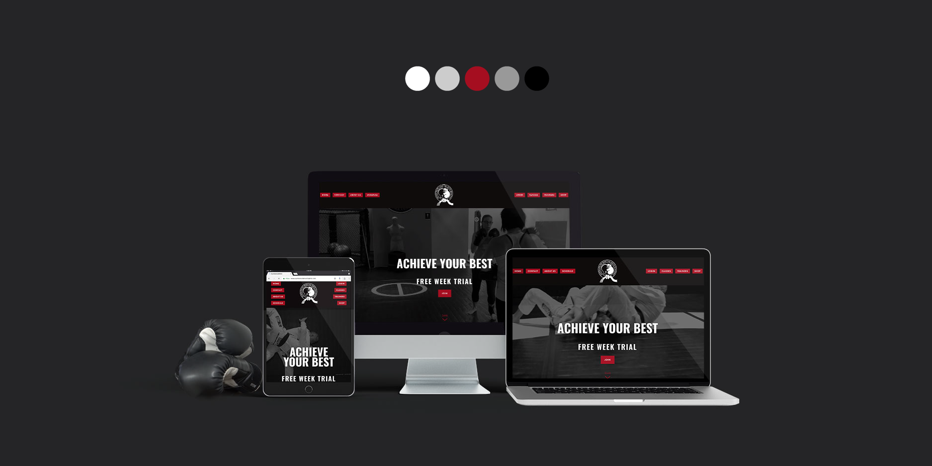 Summerside Martial Arts Academy responsive web design and branding