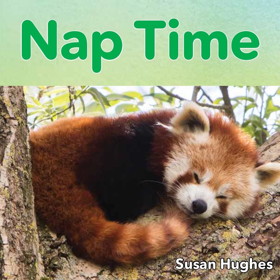 Nap Time.jpg