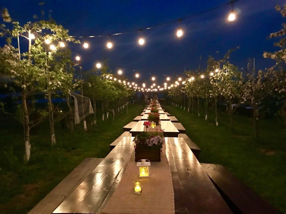 Penn Rustics Rentals - Apple Orchard Wedding Solid Wood Farmhouse Tables, Cocktail Tables, Sweetheart Tables, Wood Ceremony Bench for rent Pittsburgh market lights