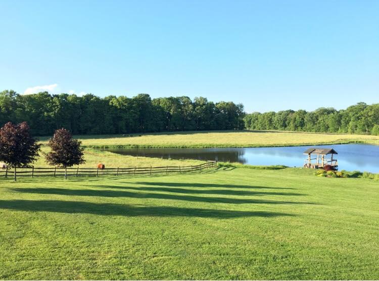 Armstrong Farms_Meadow3.jpg