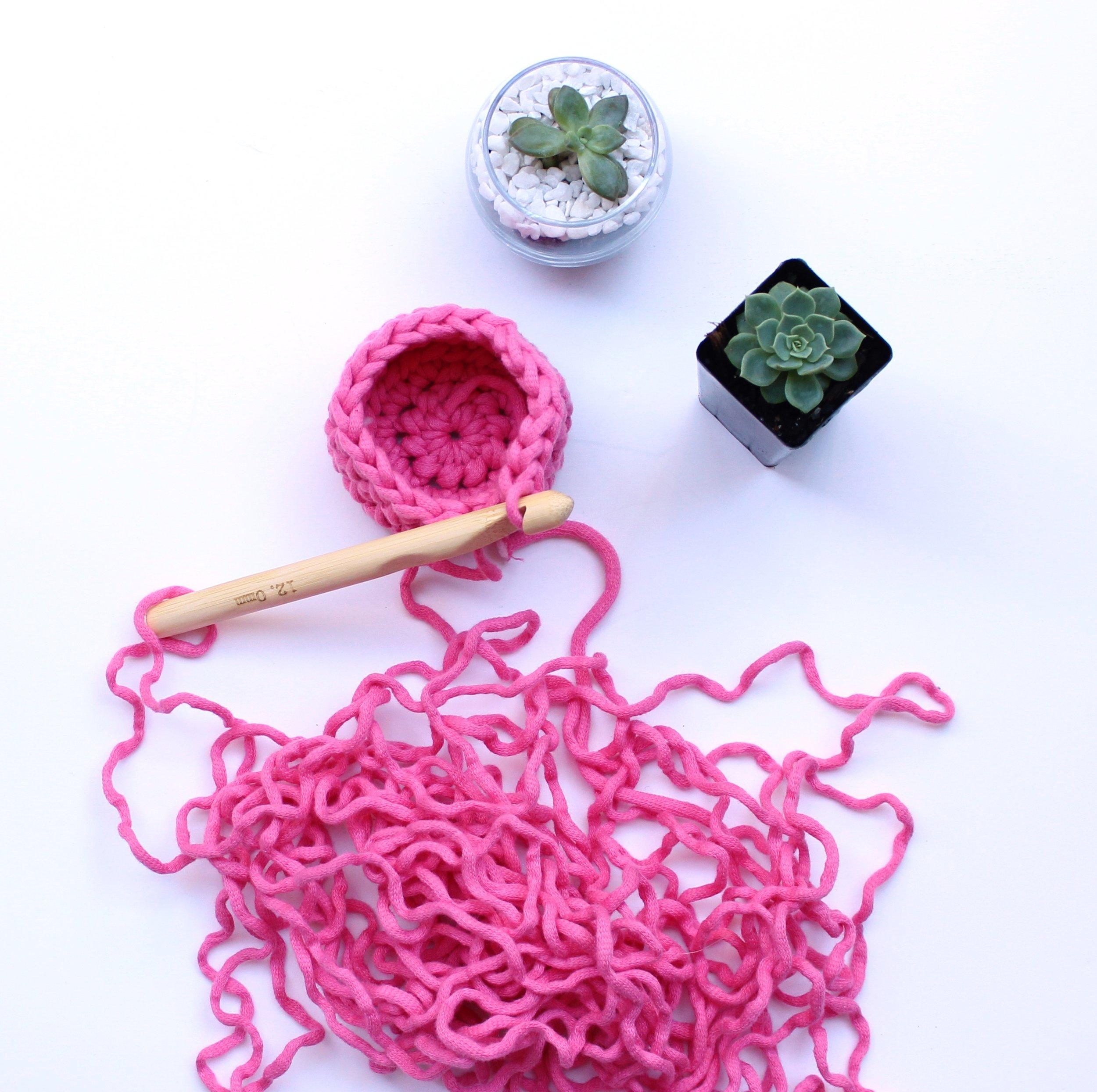crochet succulent.JPG