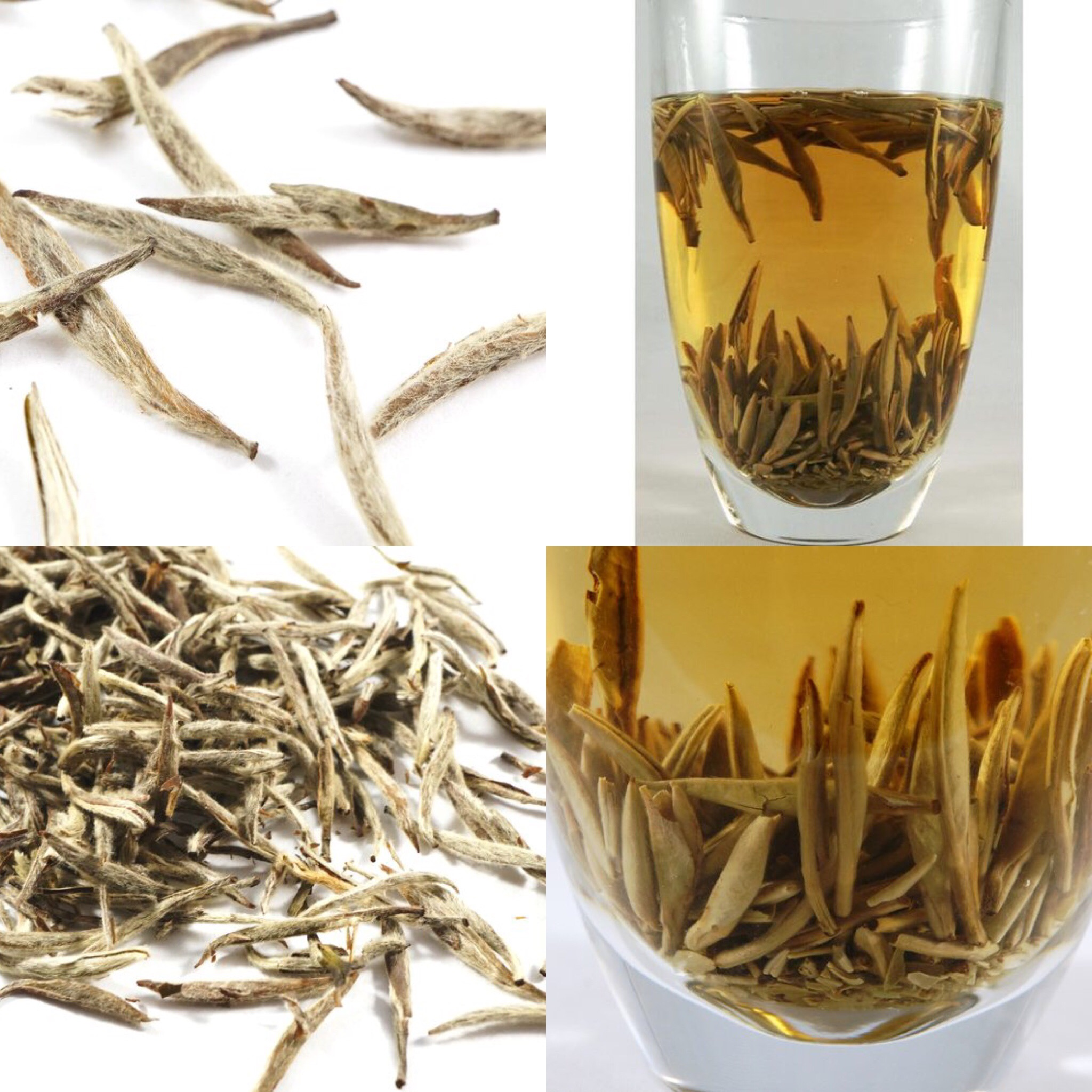 Aged (5 years) Silver Needle White Tea