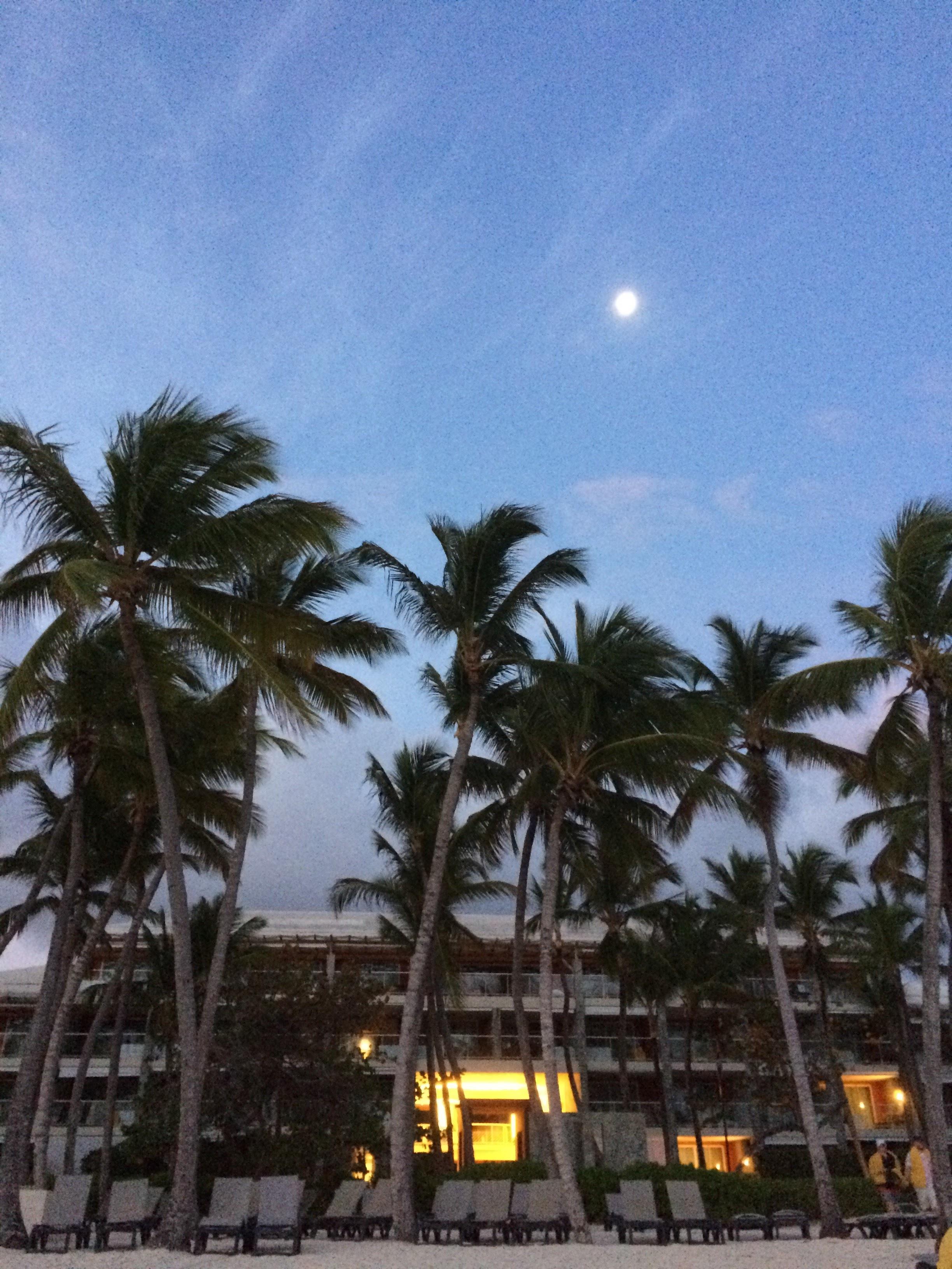 moonlight_resort.JPG