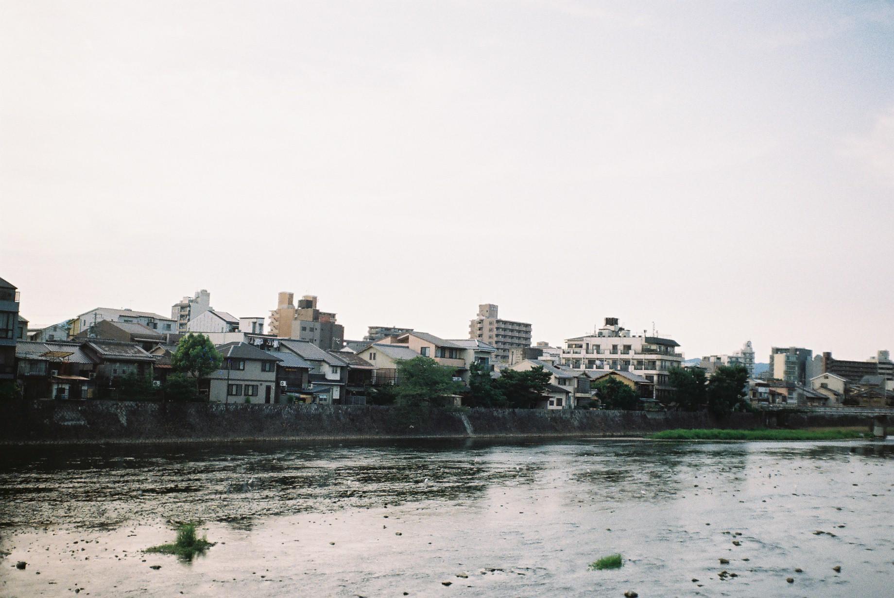 La  rivière Kamo - 鴨川 -The  Kamo River