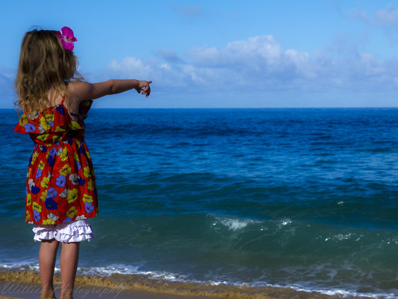 20180129-hawaii days 1-4_MG_1185.jpg