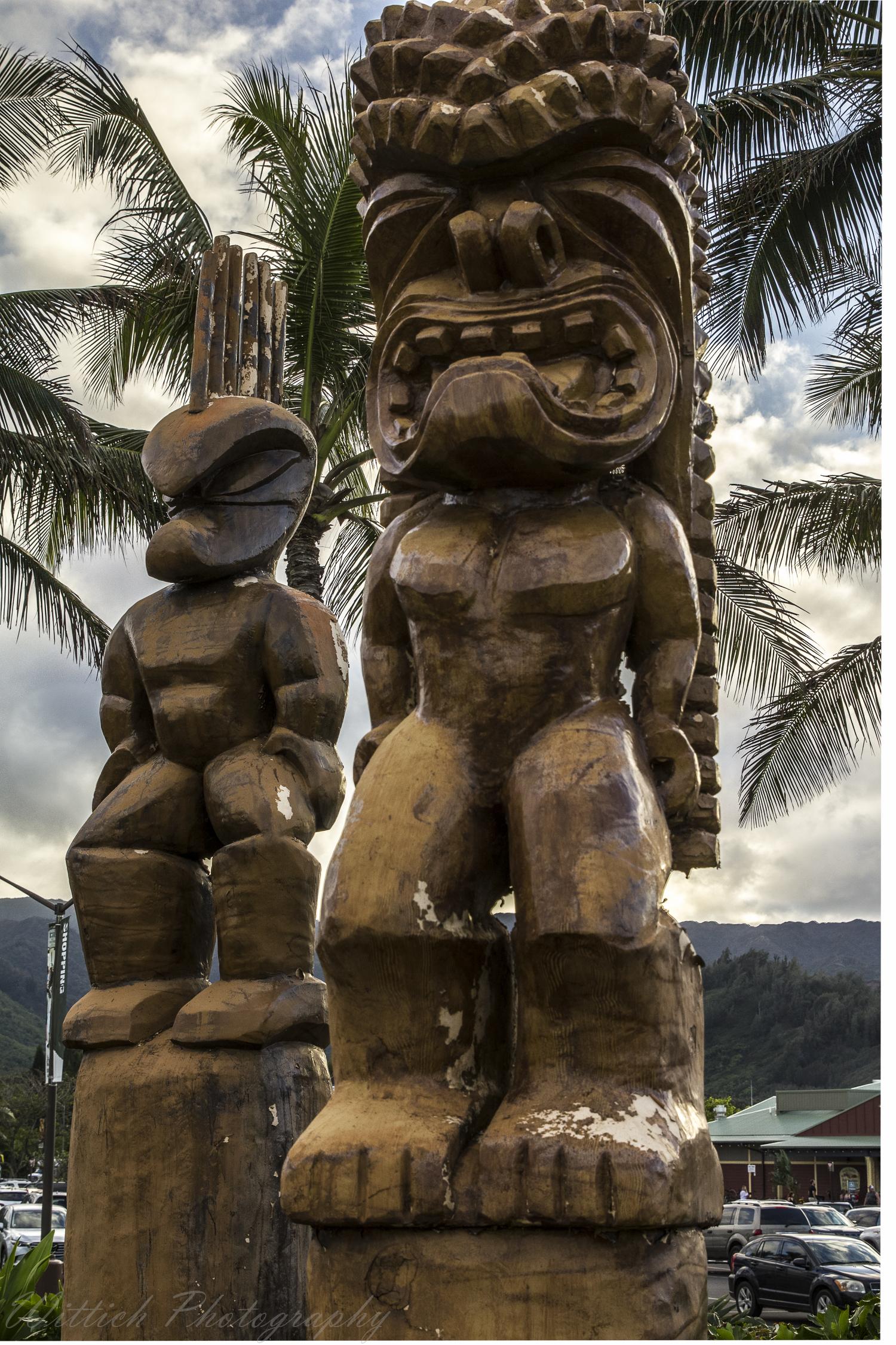 20180129-hawaii days 1-4_MG_1802-HDR.jpg