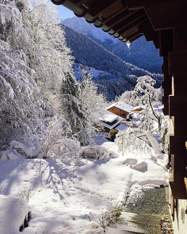 Greetings from Narnia! ❄️ #winterhascome #switzerland #freshsnow