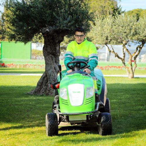 Mantenimiento de jardines en Zaragoza