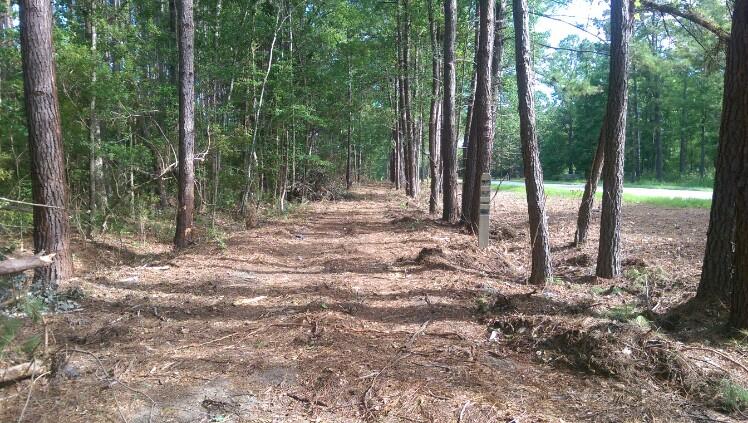Cleared Trail Path
