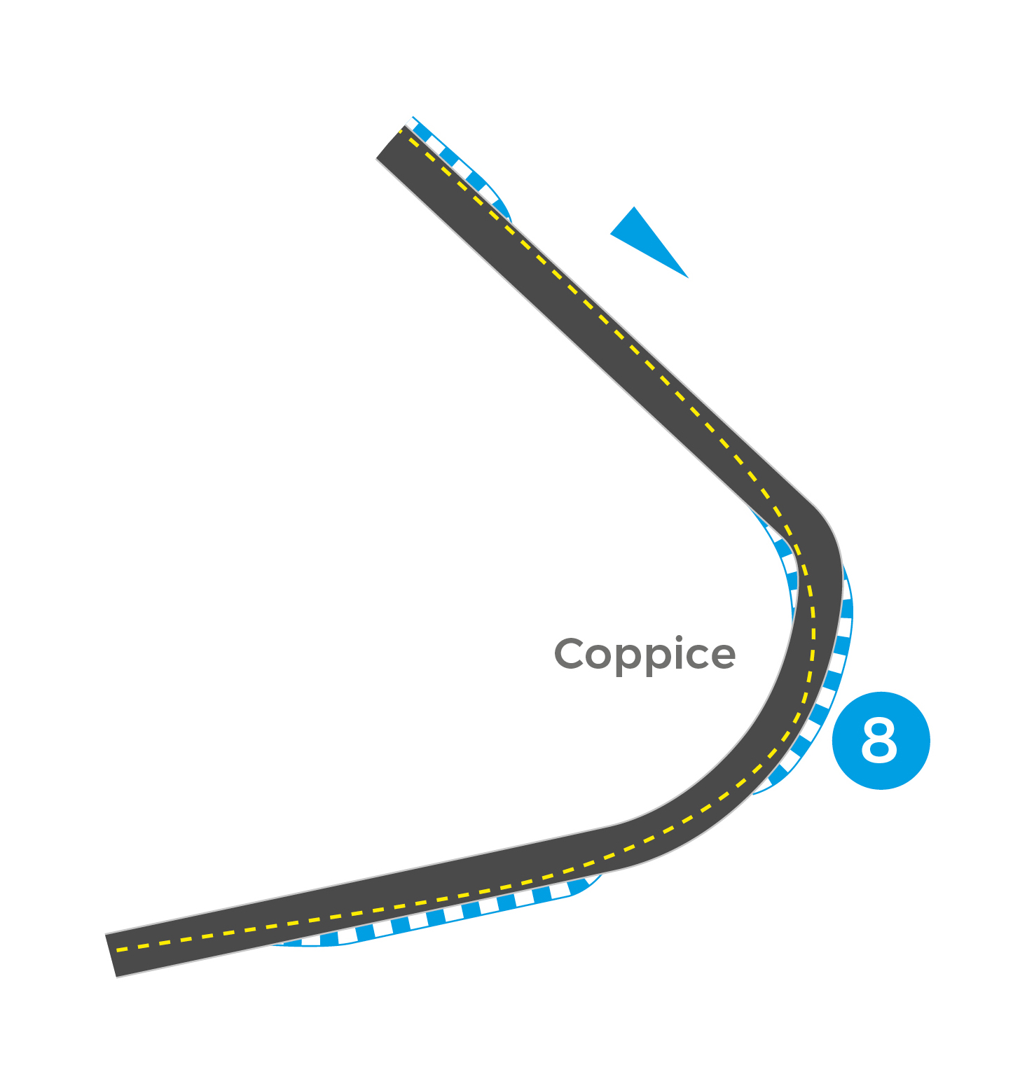 Donington Park GP (Turn 8).jpg