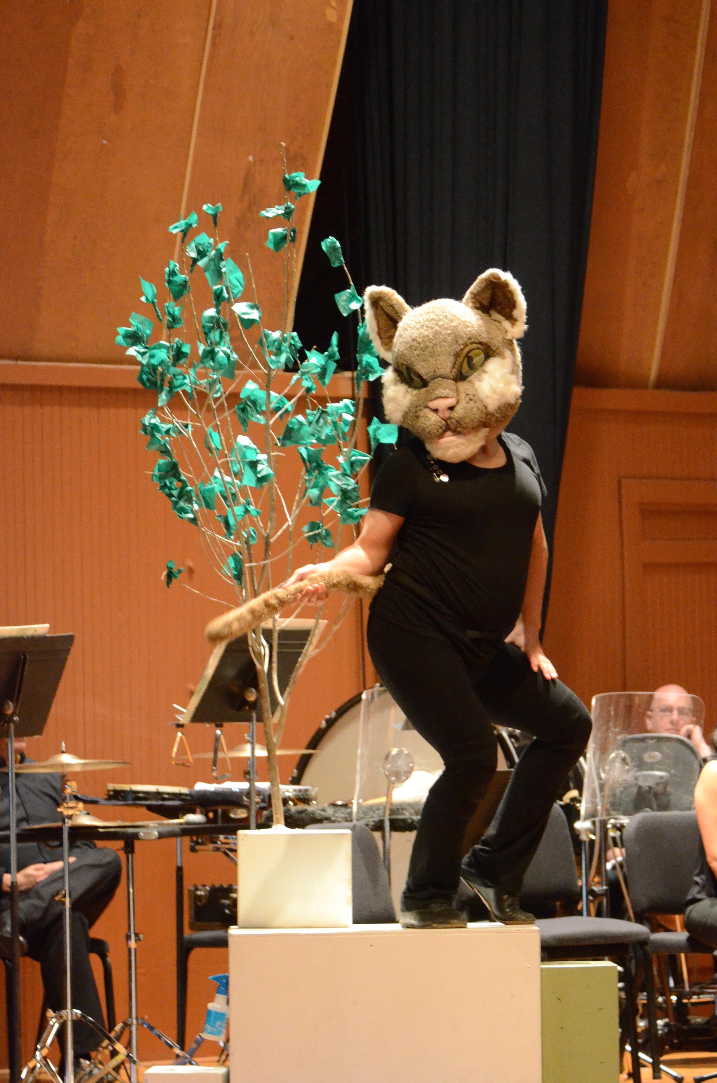 Lorenzo Gonzales in Local's PETER AND THE WOLF (in collaboration with Colorado Music Festival), Summer 2015 at Chautauqua Auditorium--  photo by Michael Ensminger.JPG