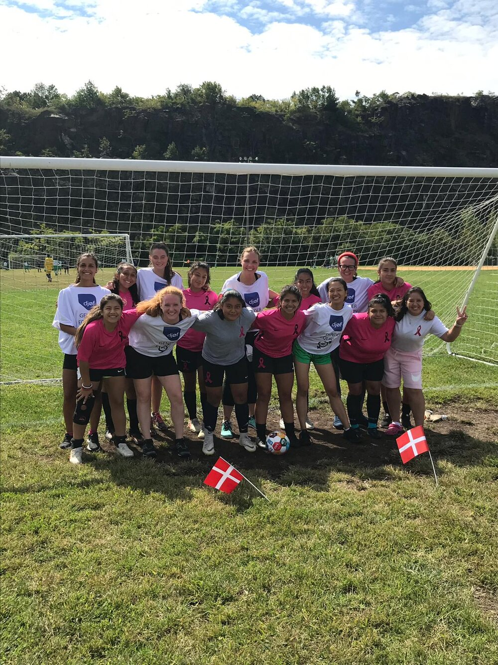 GGWCup NYC 2019 Sunday Friendly by Team Formation1.JPG