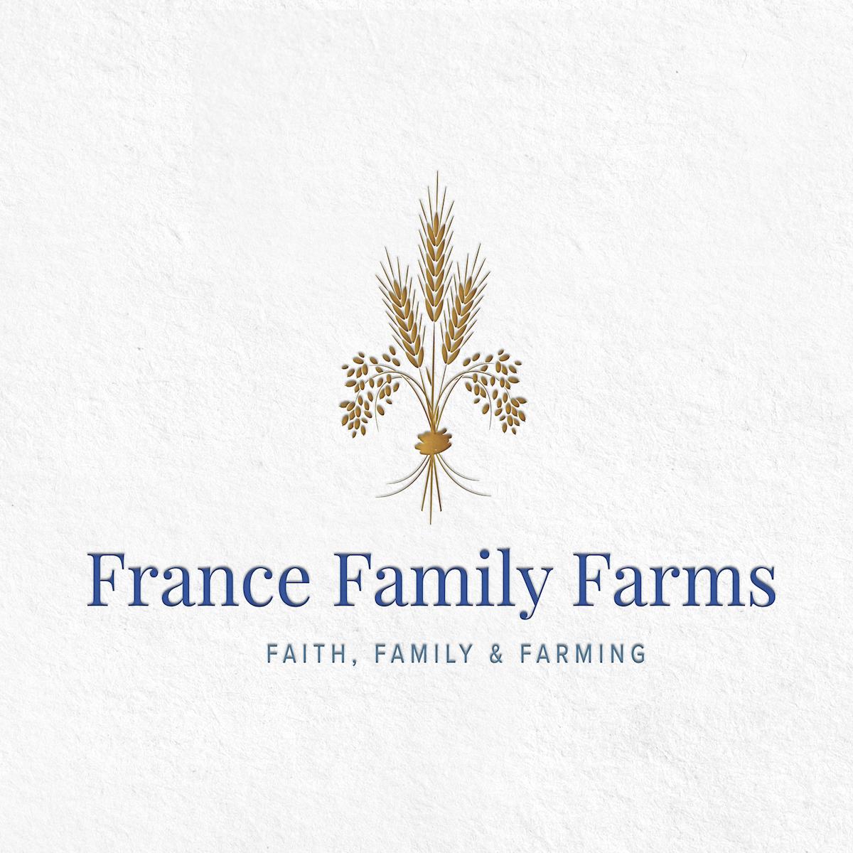 fff-logo-mockup.png
