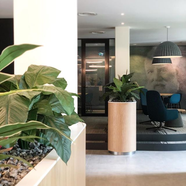ALXDR Offices, a Lobby renovation in The Hague. Design, build & project management by MAAQ.