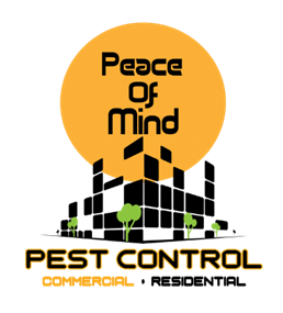 PeaceOfMind.png