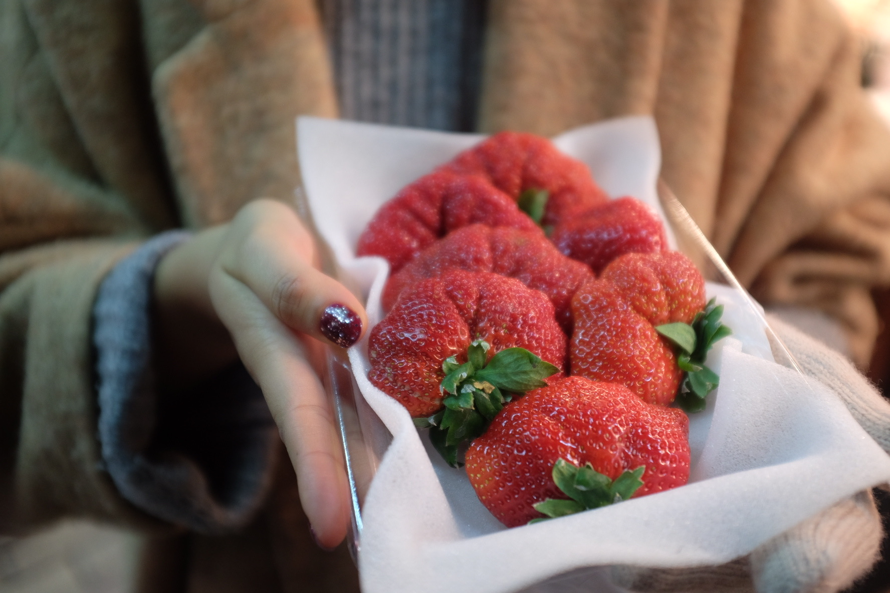 Japan's famous Kawatsura strawberries.