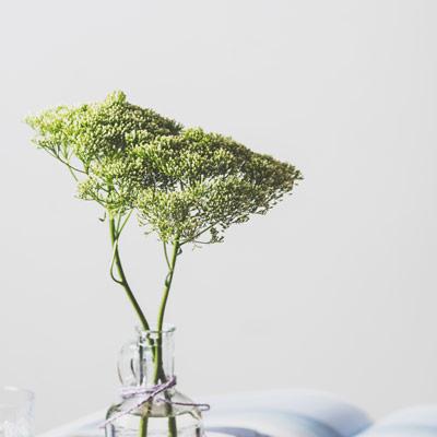 couples-pair-green-flowers.jpg