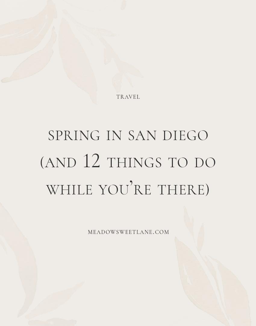 spring-in-san-diego.png