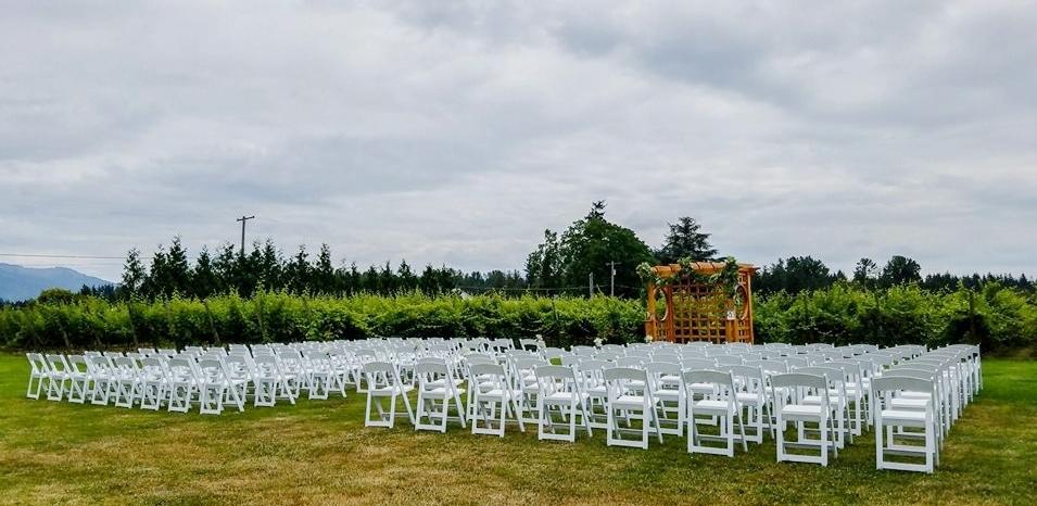 Wedding Chairs 1.jpg