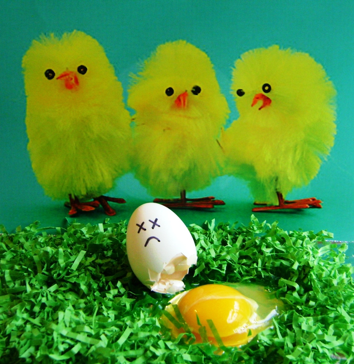John La Boone - Photo 5 - Don't Count Your Chickens Before They Hatch.JPG