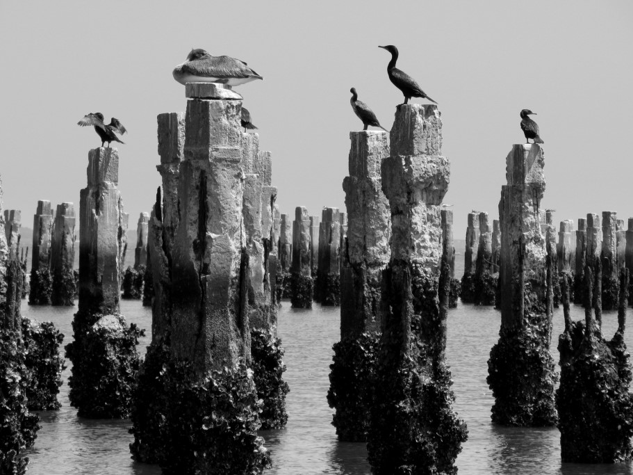 """Stonehenge"" by Carol Ann Wages"
