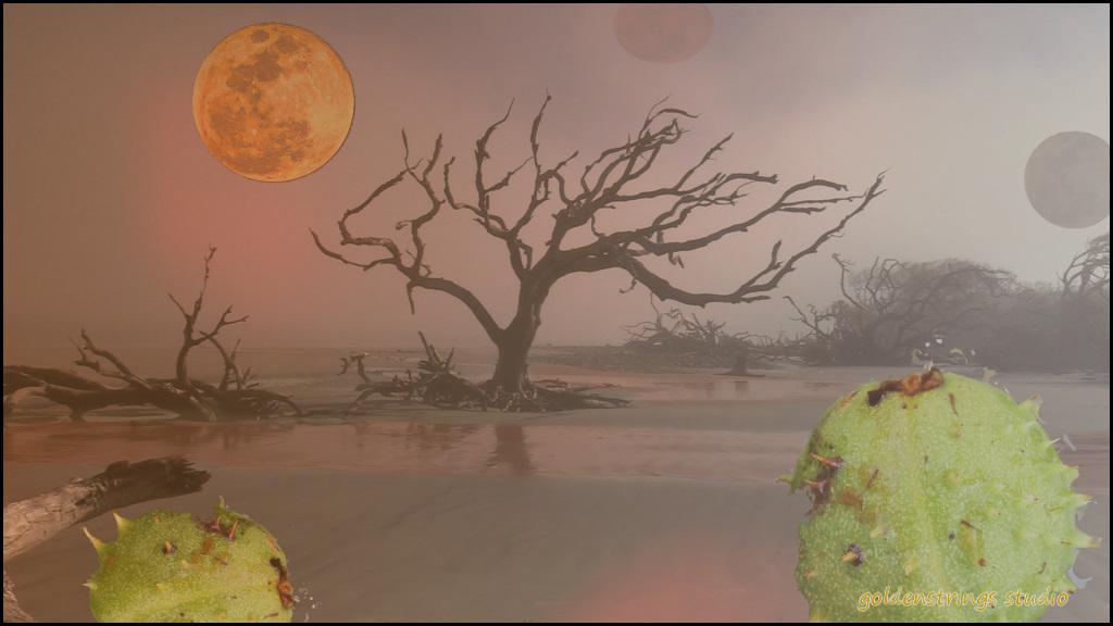 8Jim_Patrick_Alien Landscape.jpg