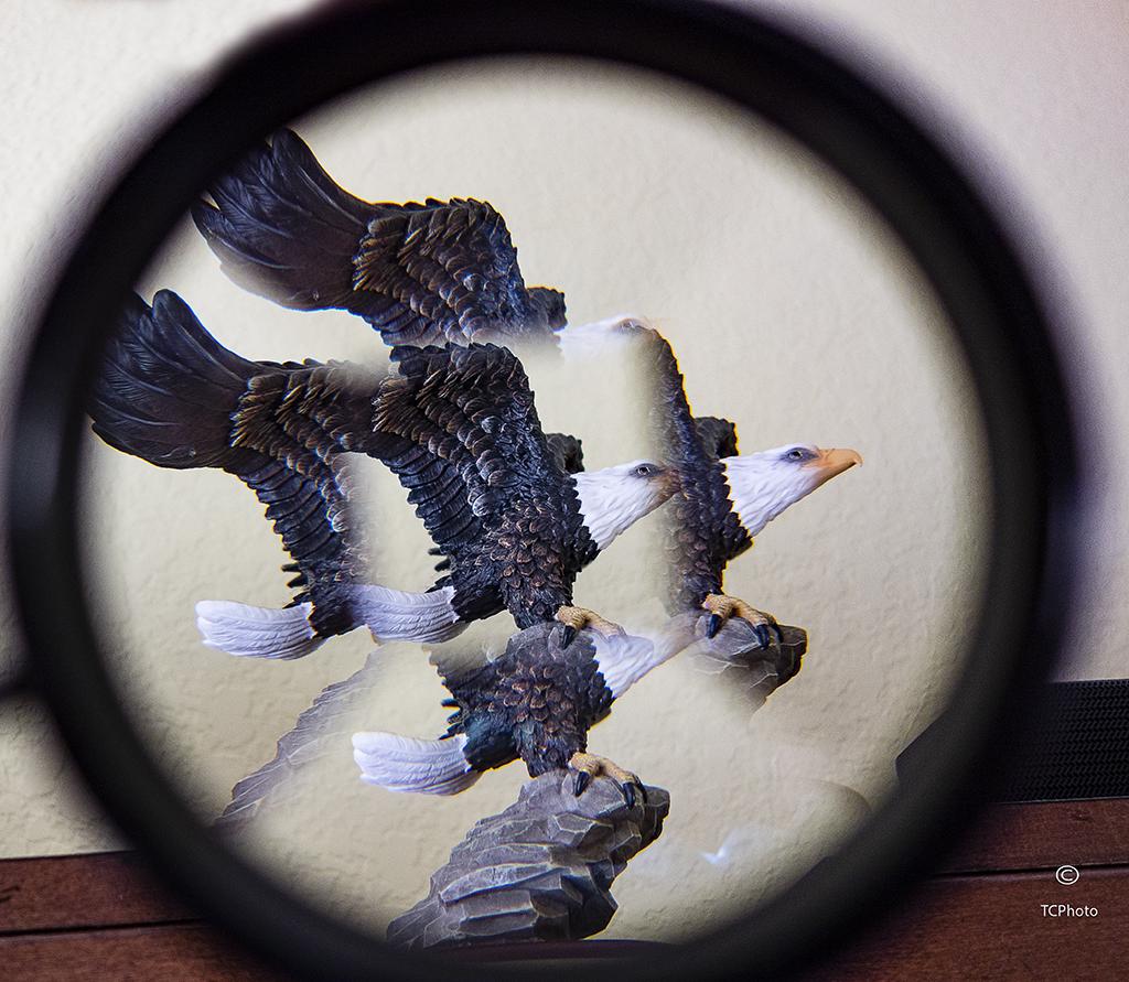Craig Warren Artistic Expression 2 .jpg
