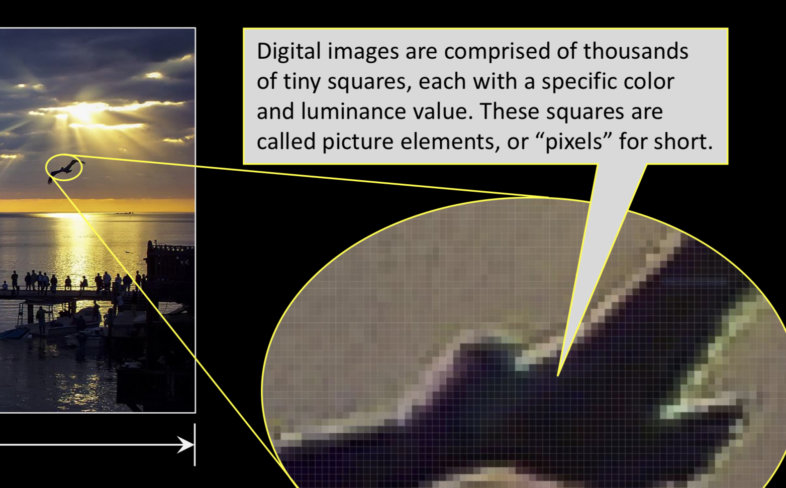 Resizing Images - Confused by pixel counts and how to resize your images? See this presentation by Michael Hanneld to get up to speed.