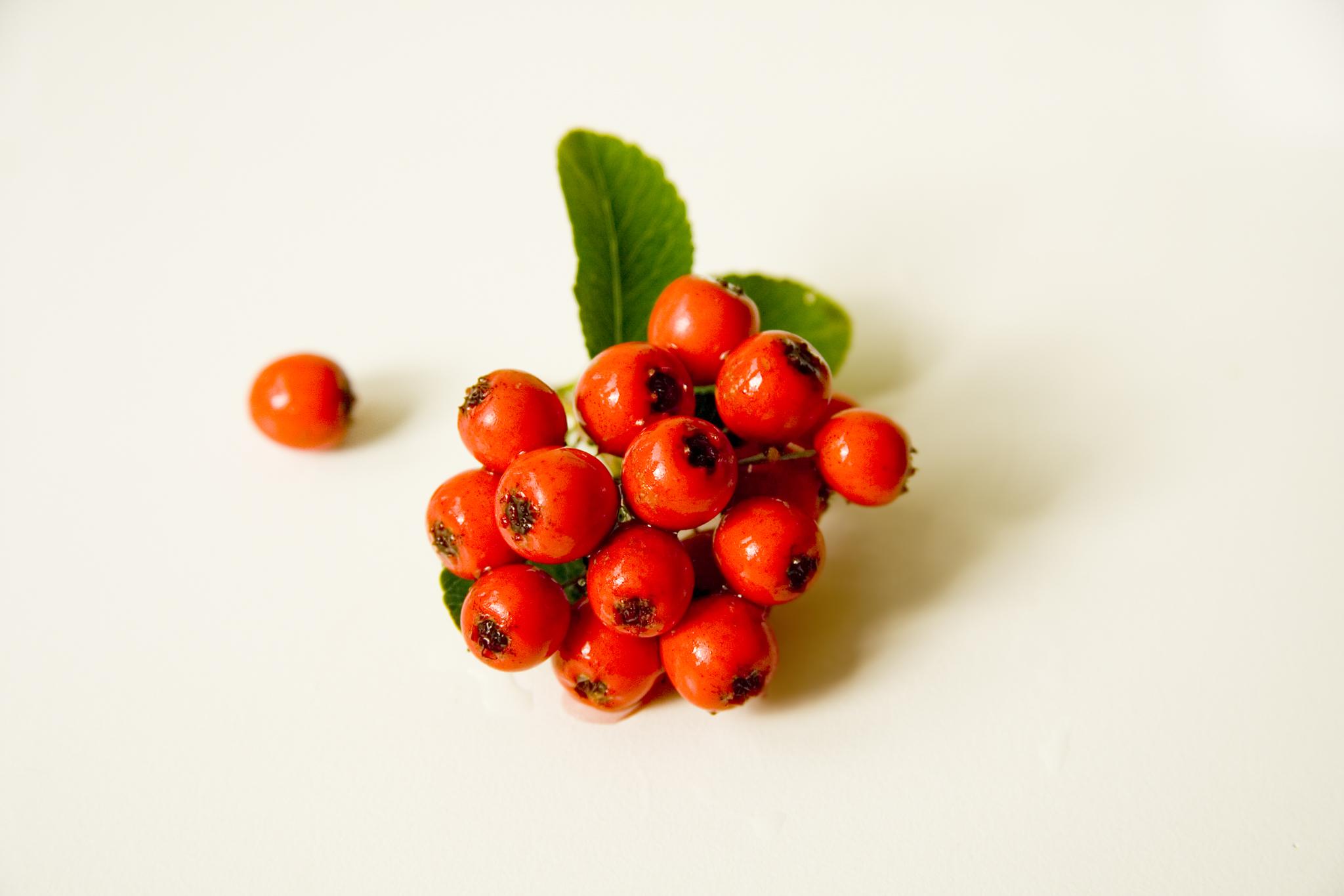 red-berries-1385927.jpg