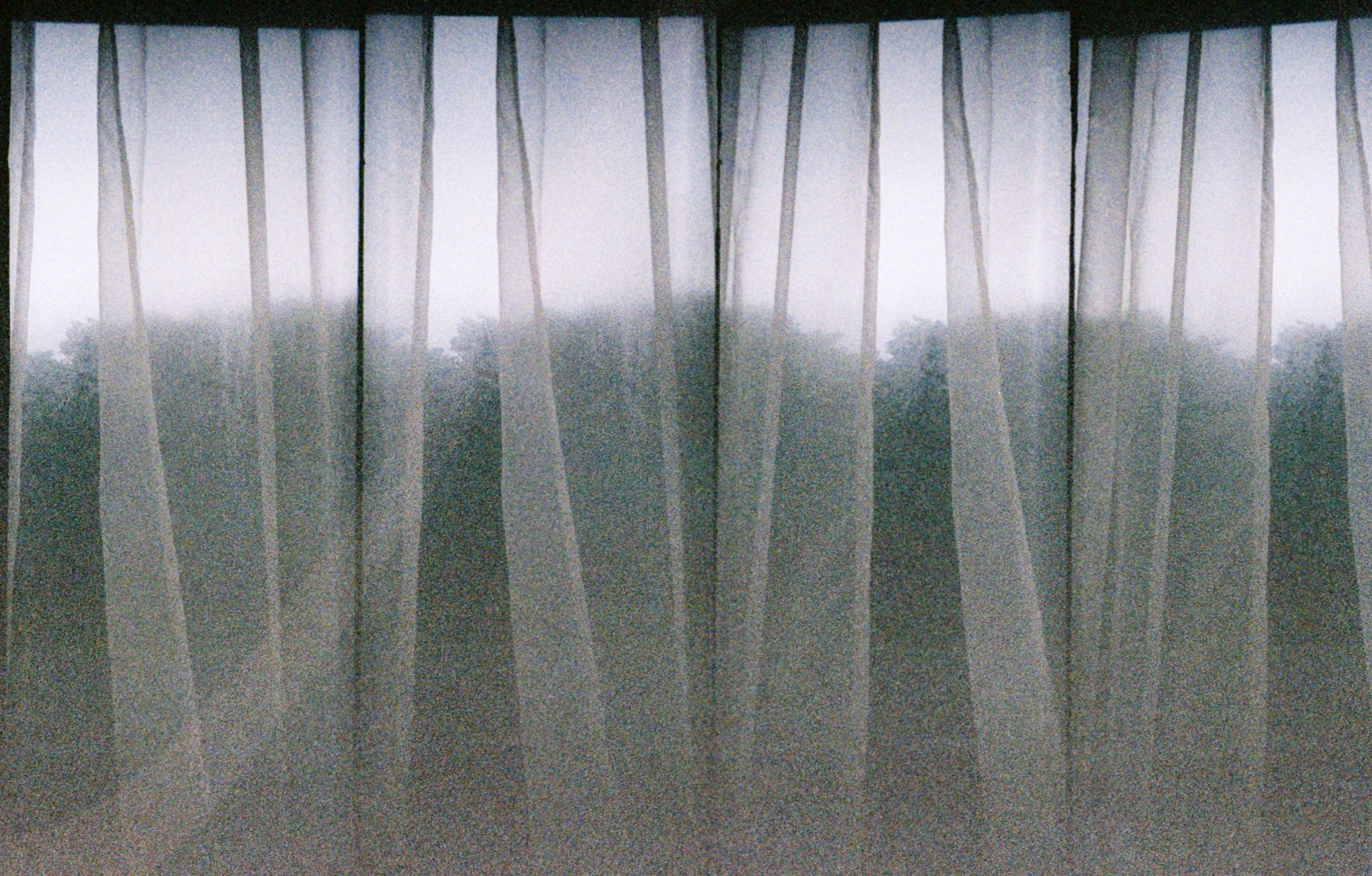 scottish-window-print.jpg