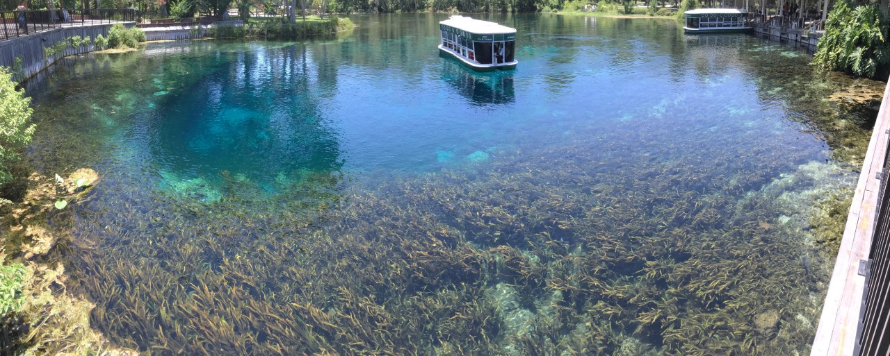 Silver Springs State Park - Glass Bottom Boats