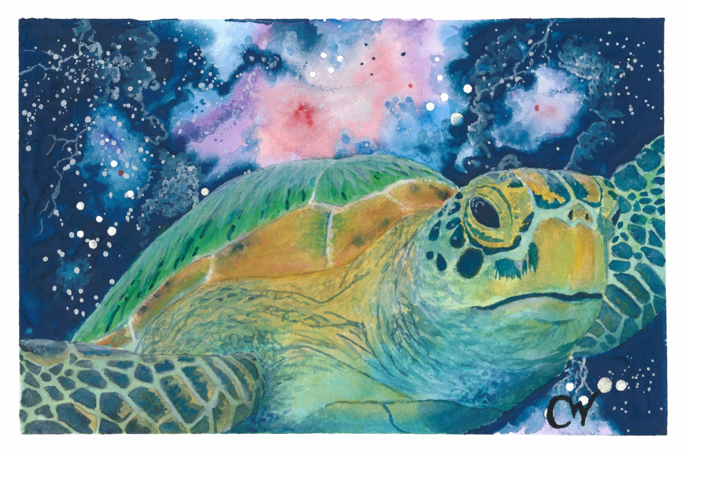 """""""Mother Ship"""" prints available!"""