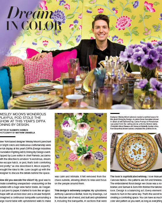 Luxe-Mag-DIFFA-Coverage.jpg
