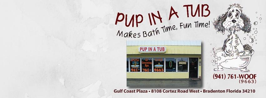 pup in tub fb cover.jpg