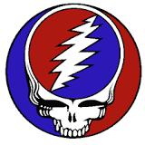 grateful-dead-logo-lightning-skull.jpg