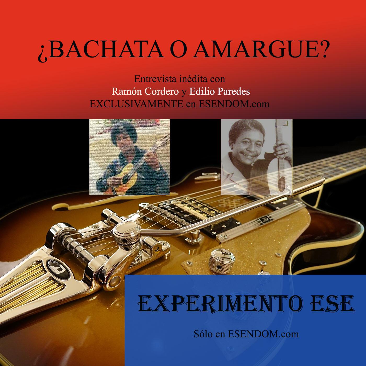 ADsCordero_Paredes_ExperimentoESE10.jpg