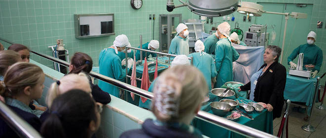 Transplantation de coeurs de porcs chez l'homme