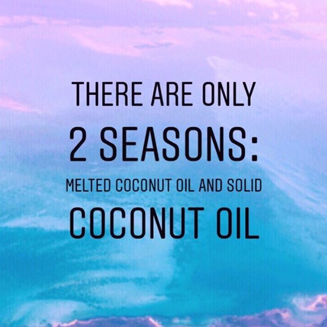 """Yep, my coconut oil is melted, so it must be summer!  Fun fact: Farmers used to feed their pigs coconut oil before the whole """"heart-healthy unsaturated fats"""" scam started.  But they had to stop, and started feeding them """"vegetable"""" oil and seed oils because the coconut oil made the animals lean, hungry and revved up their metabolism too much, while the vegetable and seed oils made the animals, slow, fat and cheaper to fatten for slaughter.  Which one do you think is better for your metabolism, waistline and heart health? 🤓 Coconut oil also is also antifungal, antibacterial, and antiseptic.  It is even as effective as chlorhexidine (the antiseptic often used in hospitals) to kill S. mutans.  It one study, it was seen to kill more than 90% of colon cancer cells after just TWO DAYS of treatment.  Coconut oil is also more like your natural fatty acid composition as it contains Lauric acid (the same found in breast milk). Cultures with 60% of their fat as coconut oil have no heart disease.  It also contains MCT oil that reverses insulin resistance, and improves brain function.  So brain fog, sibo, digestive issues, fat gain and hormonal and heart health can all be improved by simply adding this beautiful oil to your diet.  I aim for about 2 tbsp a day myself, more if I feel slow, sleepy, etc.  I double dog dare you; switch out EVERY SINGLE liquid oil in your diet (yes, even fish and avocado oil) for refined coconut oil for 2-4 weeks and watch how much better you feel.  You can use refined (so there's no coconut taste), and you'll still get all the benefits.  And if you want to do more than symptom treat, if you want to learn how your body works and quit dieting on and off again for the rest of your life, grab my """"Intro to a Metabolic approach"""" at the link in bio, and start working smarter by working with your body. 😏 It CAN be easier, babe, I promise! . . . #hypothyroidism #eliminationdiet #healyourgut #guthealthmatters #antiinflammatorydiet #hormonehealth #hormonebalanc"""