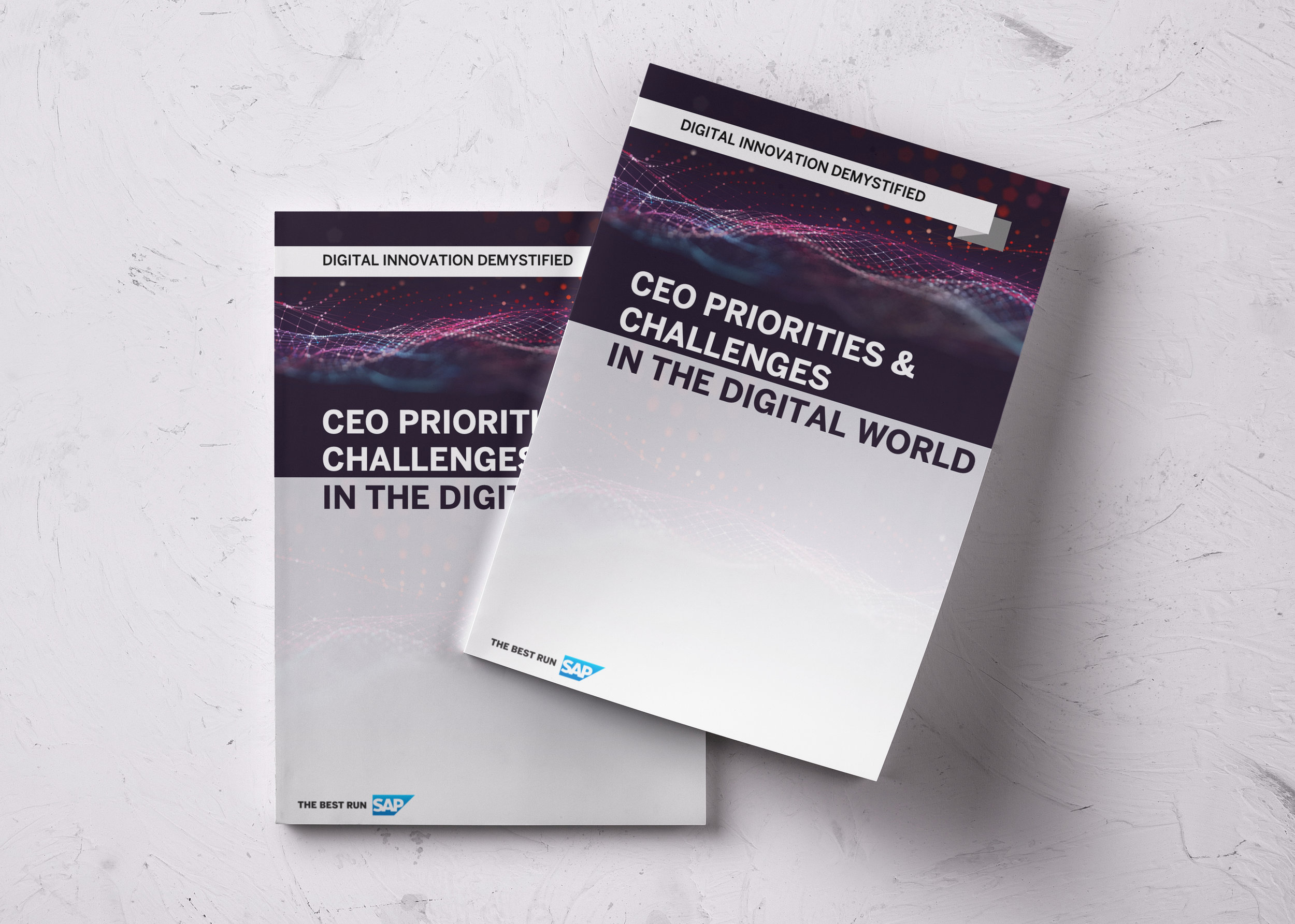CEO priorities White paper