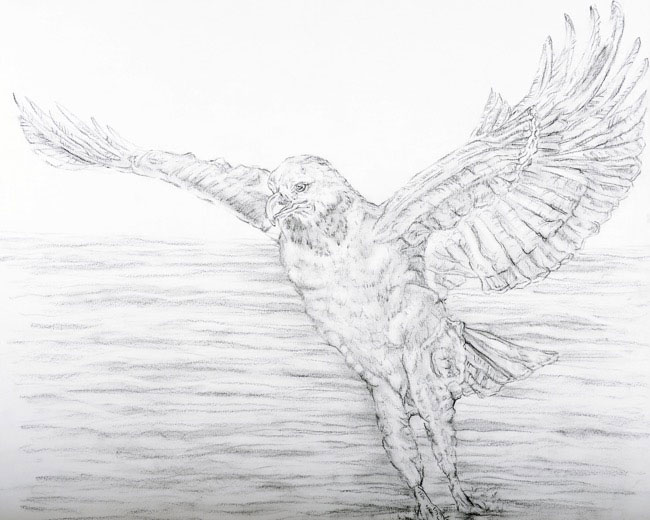 2014_2826_drawing.JPG
