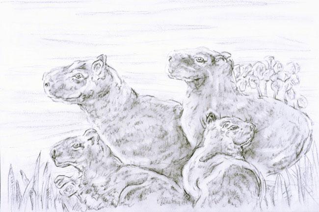 2014_2849_drawing.JPG